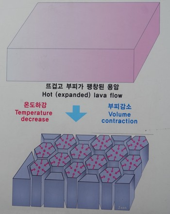 Jungmun - Falaises Jusangjeolli et orgues basaltiques - Formation des hexagones
