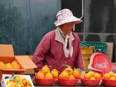 Jungmun - Falaises Jusangjeolli - Vendeuse d'oranges