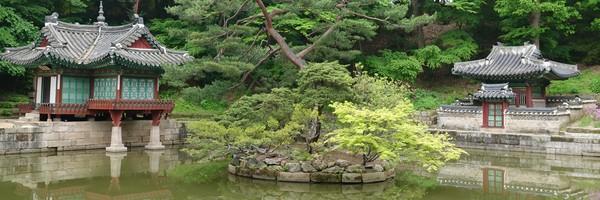Jolie balade dans le Jardin secret du Palais Changdeokgung, àSéoul