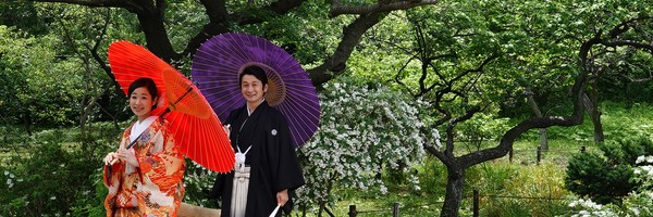 Jardin Sankeien et petits temples autour deYokohama