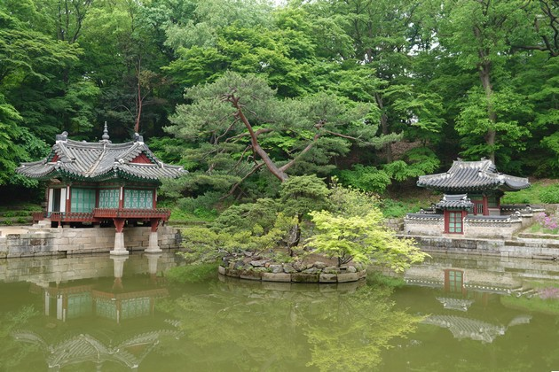 Corée-1167