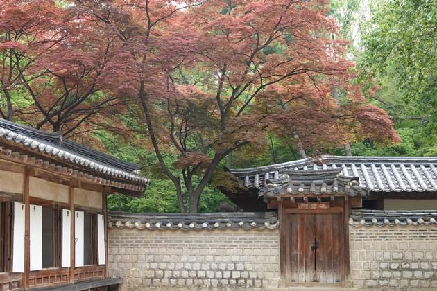 Corée-1172