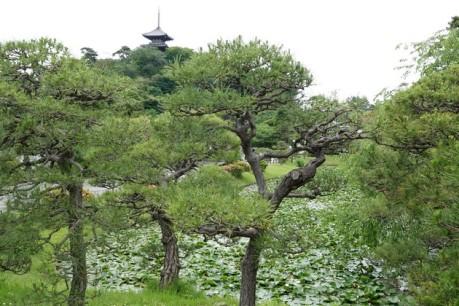 Yokohama - Sankeien Garden
