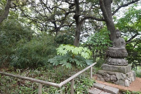 Yokohama - Sankeien Garden - Jardin extérieur