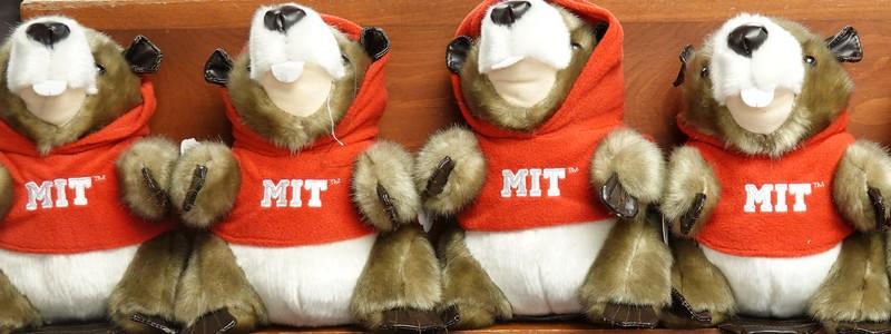 Balade à Harvard et au MIT, au cœur des plus célèbres Universités dupays