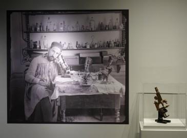 Cambridge - MIT Museum - Expo sur le cerveau - Santiago Ramon y Cajal