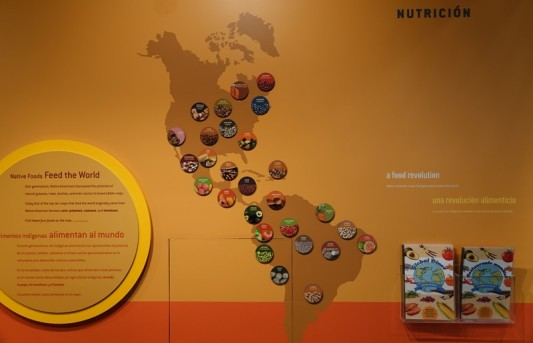 New York - National Museum of The American Indian - Plantes originaires d'Amérique