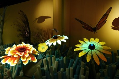 "New York - American Museum of Natural History - Our Senses, an Immersive Experience - Atelier""voir comme une abeille"""