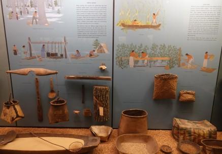 New York - American Museum of Natural History - Vitrines ethnologiques présentant la culture amérindienne - Infos sur l'utilisation et la préparation du riz sauvage et du sirop d'érable
