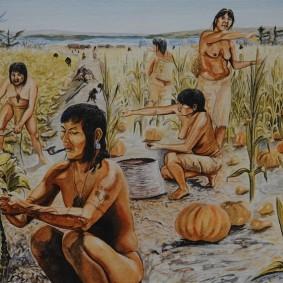 Musée amérindien de Mashteuiatsh - Exposition d'aquarelles de François Girard, d'après les recherches ethnographiques de Marc Laberge - Culture des champs (de l'an 1000 à l'an 1500)