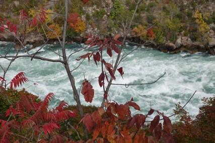 Niagara Falls - Vue depuis l'attraction Whirlpool Aero-car