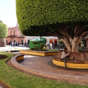 Querétaro - Jardin Zenea