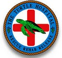 sponsor - turtle hospital