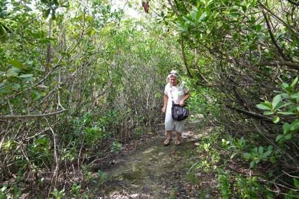 Miami - Fairchild Tropical Botanical Garden - Oui, je le reconnais, je ne suis pas très rassurée sur ce sentier qui longe l'étang !