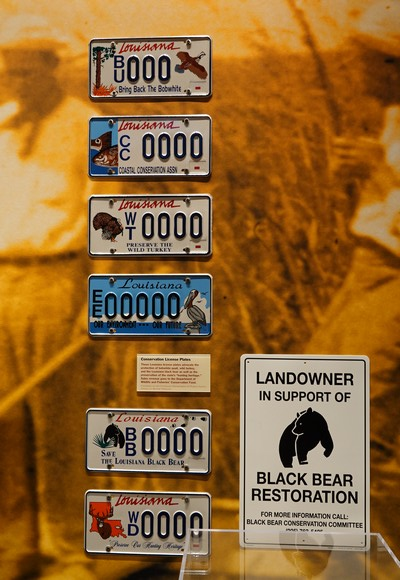 Bâton-Rouge - Capitol Park Museum - Maintenant, chacun peut personnaliser sa plaque d'immatriculation à son choix : certains préfèrent des plaques qui luttent pour la défense des espèces menacées... Une bonne initiative !