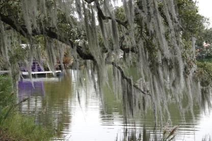 New Orleans - City Park