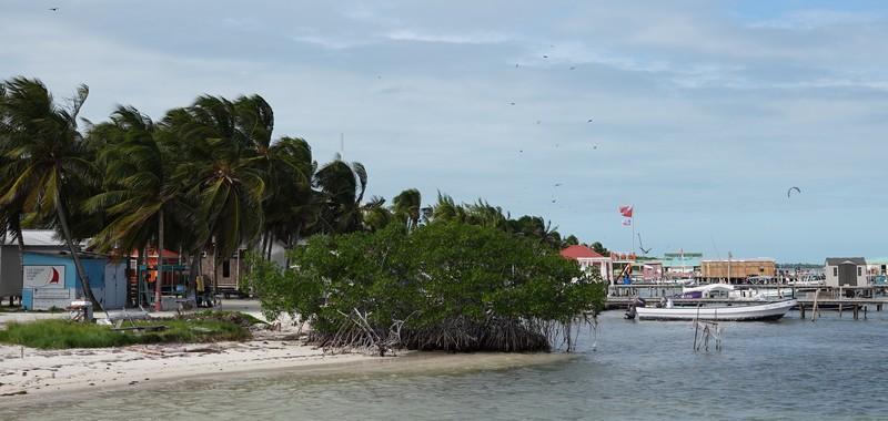 Belize - 10