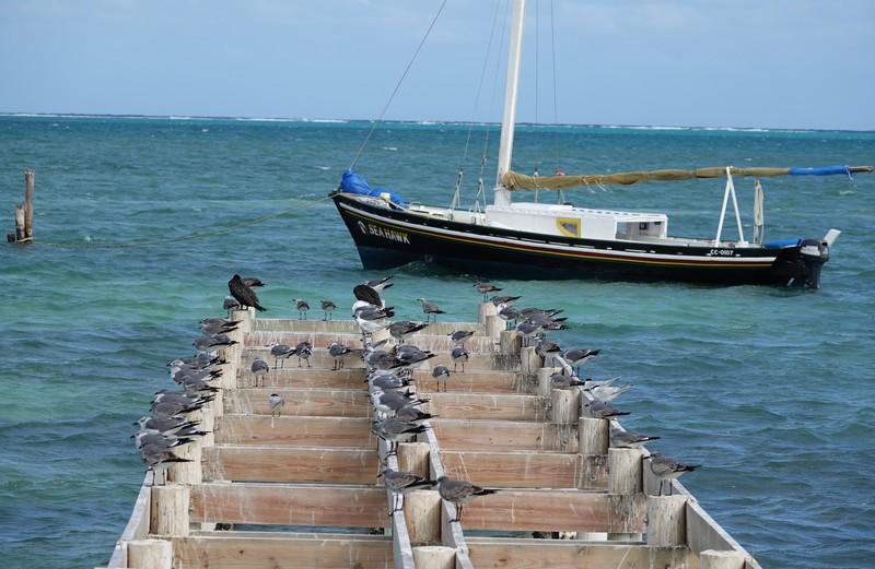 Belize - 11
