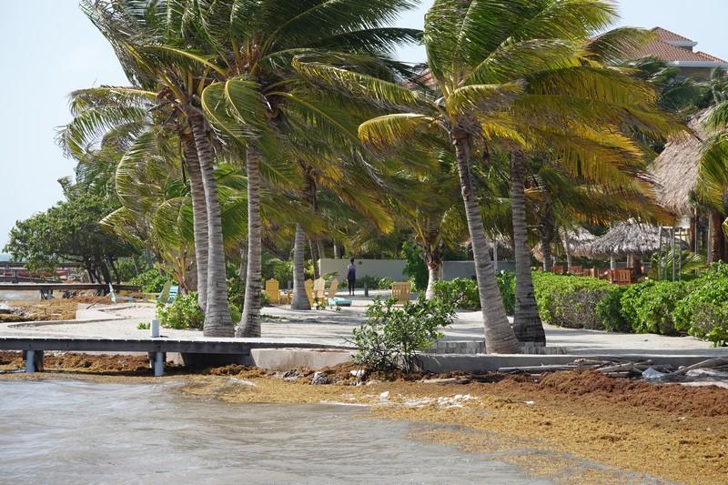 Belize - 121