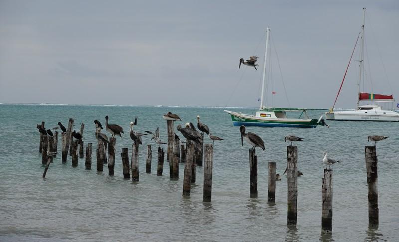Belize - 51