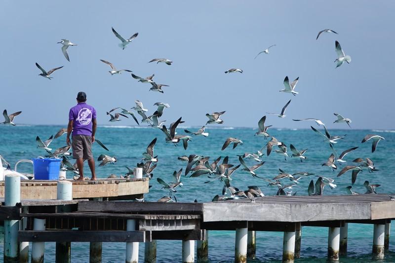 Belize - 60
