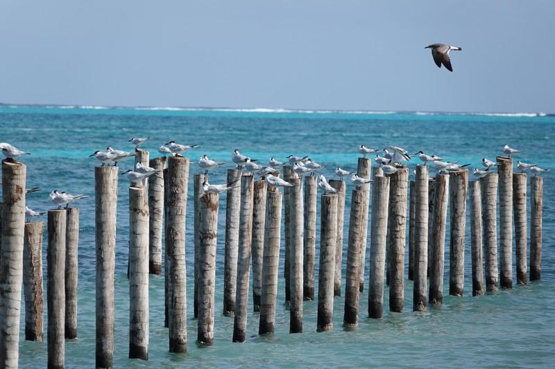Belize - 63