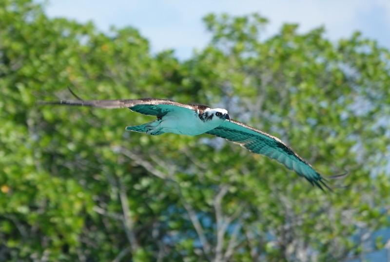 Belize - 81