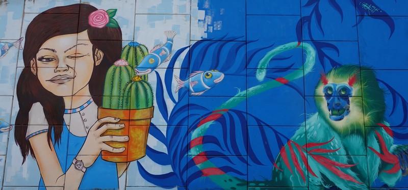 Akumal - Murs peints