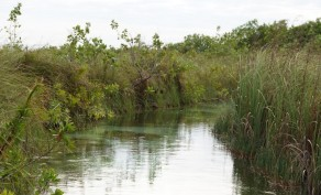 Biosphère de Sian Ka'an