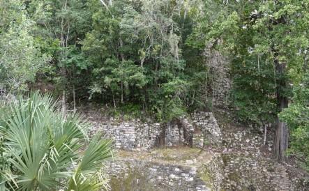 Coba - On sent que de nombreuses ruines encore non mises à jour nous entourent...