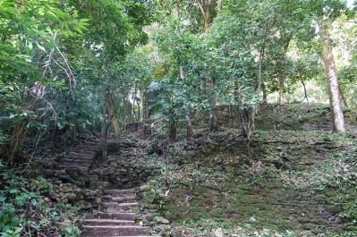 Site archéologique des ruines de Palenque - Chemin qui monte au Grupo de la Cruz