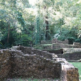 Site archéologique des ruines de Palenque - Petite balade dans la jungle pour rejoindre le musée