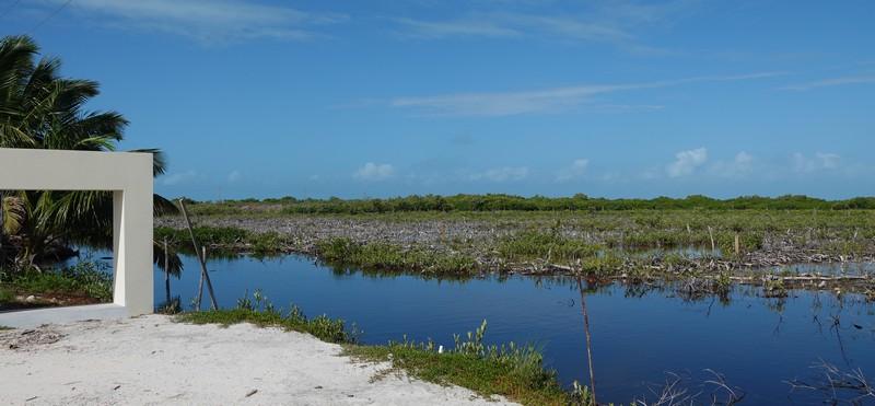San Pedro - Balade vers le sud de l'ile - Mangrove endommagée...