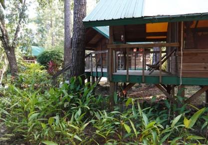 Lodge du Zoo de Belize - D'autres cabanes plus simples, dans le parc
