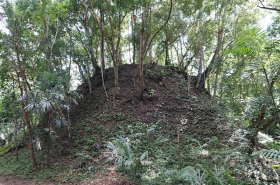 Tikal - Un minticule sous lequel se trouve des vestiges non mis au jour...