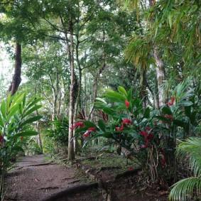 Parc du Castillo de San Felipe de Lara