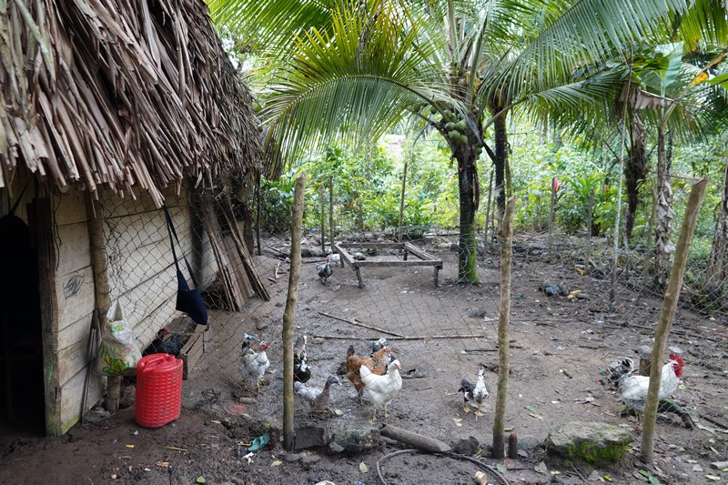 Barra Lampara - Village maya Gran Plan Tatin - Chez Arturo