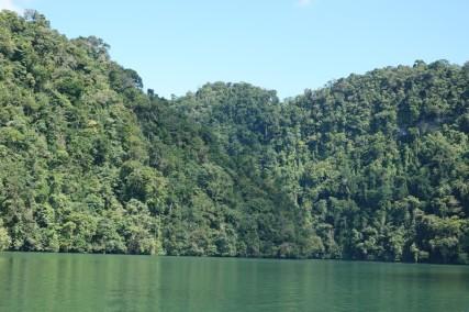 Sur le fleuve Rio Dulce, entre Barra Lambara et Livingston