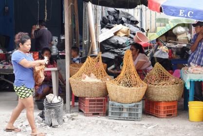 Flores - Marché - Vendeur de poulets vivants