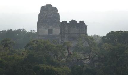 Tikal - Vue depuis le sommet du Temple IV