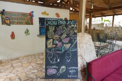 Copan - Macaw Mountain Bird Park - Au menu aujourd'hui...