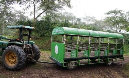 Plantation Welchez - Coffee Tour