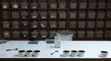 """Plantation Welchez – Coffee Tour - Atelier """"dégustation"""" - Au fond, on voit les boites des différents cafés produits ici..."""