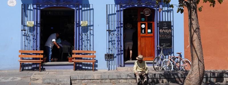 Oaxaca, une ville d'histoire, festive et culturelle!