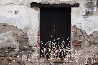 Antigua - Non loin de Santa Clara - Fleurs en papier
