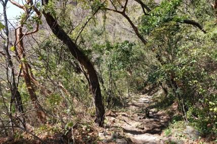 Reserva Natural Atitlan - Balade à pied