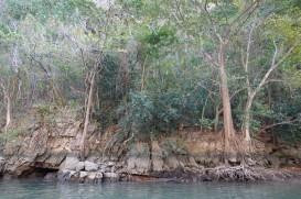 Canyon del Sumidero - Balade en bateau