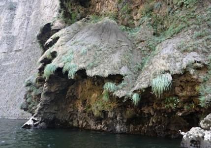 Canyon del Sumidero - Balade en bateau - Détail de cette grande formation géologique