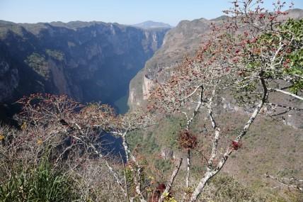 Canyon del Sumidero - Depuis le Mirador El Chiapas