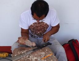 Vers Oaxaca - Atelier d'Alebrijes - Sculpture d'objets en bois